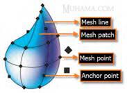 شبکه توری ابزار Mesh