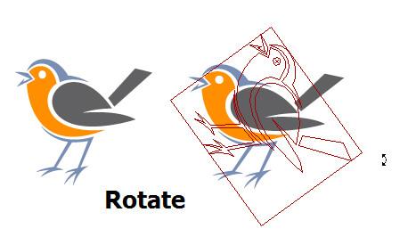 چرخش شیء با دستور rotate