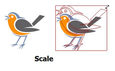 تغییر اندازه شیء با دستور scale