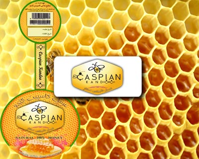 کاور ظرف عسل کاسپین